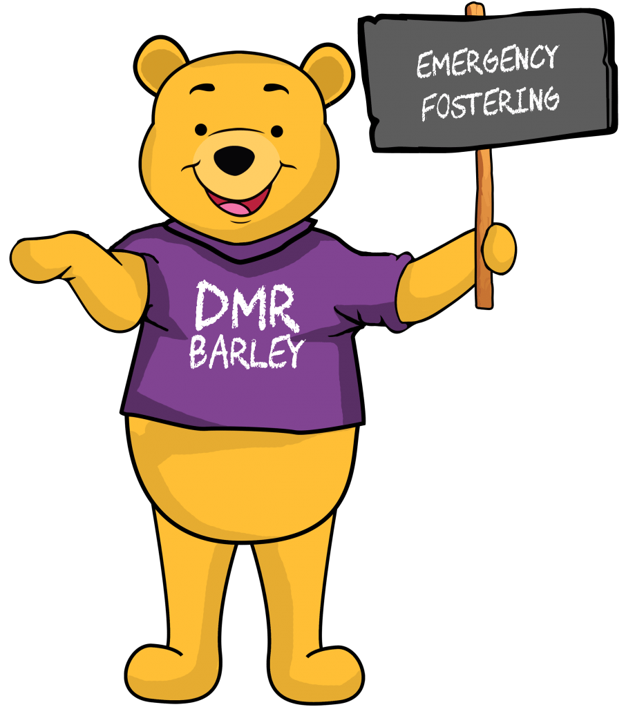 Emergency fostering - Emergency Foster Care Information - DMR Fostering Services
