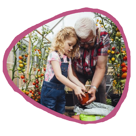 Elderly foster carer showing child how to grow plants and talks about age and fostering with DMR Fostering Services.